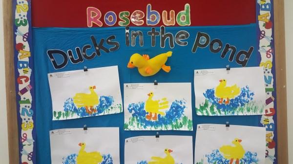 Creative notice board - Duck hand prints